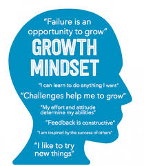 Click here for the Presentation from the Growth Mindset Parent Education Night Presentation